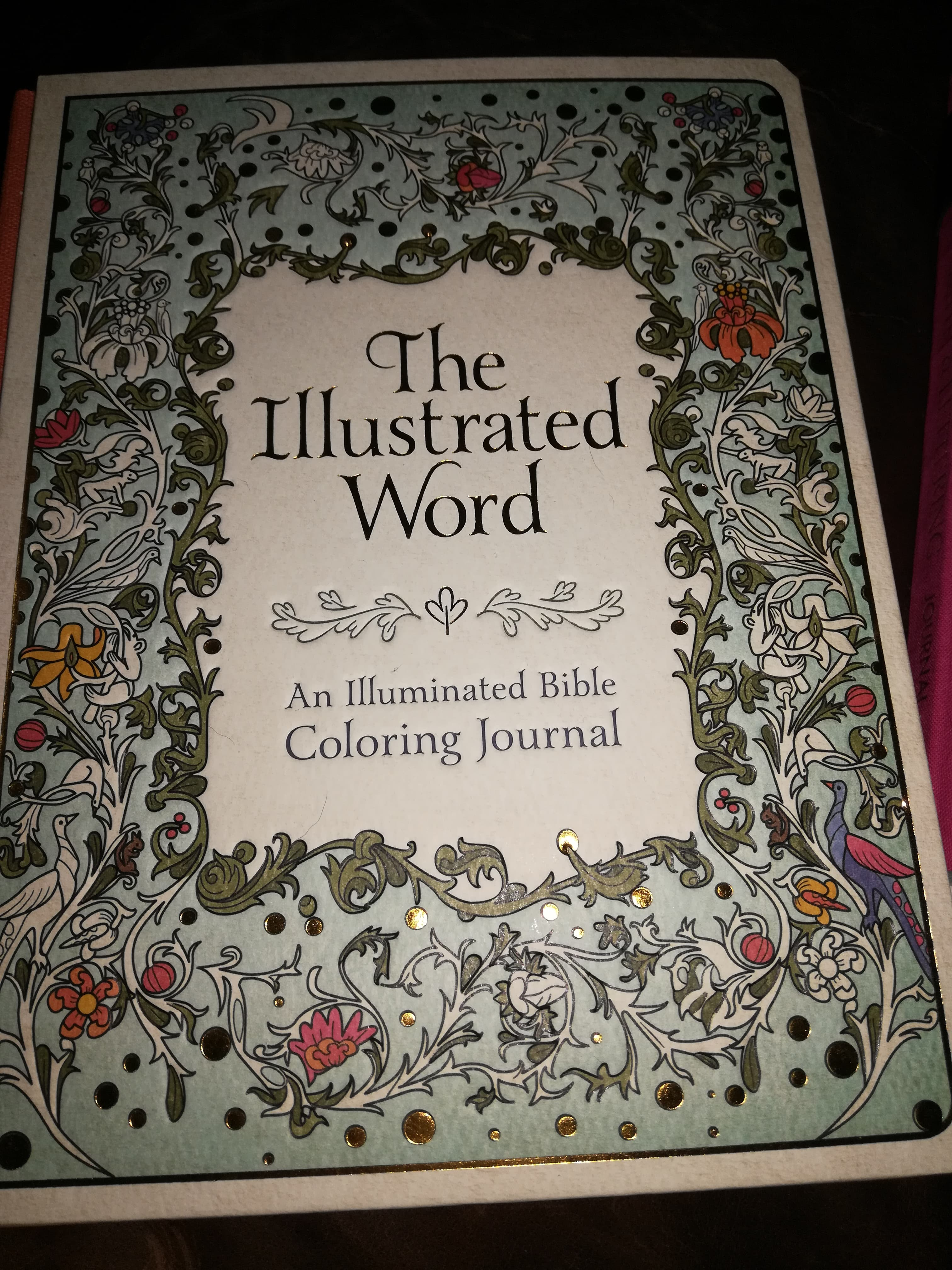 The Illustrated Word Journal by Ellie Claire